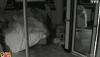 Carré ViiiP vidéos : Giuseppe et Cindy pris en flag' dans le même lit!