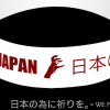 Séisme/Tsunami au Japon : Miley Cyrus, Mariah Carey, Lady Gaga mobilisées!