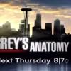 Grey's Anatomy saison 12 : une nouveauté qui va vous étonner !