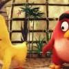 La 1ère bande-annonce du film Angry Birds dévoilée