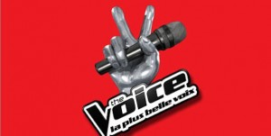 The Voice 2 sur TF1