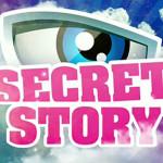 TF1 / Secret Story 4