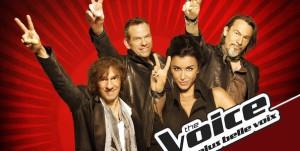 The Voice 2 cartonne sur TF1