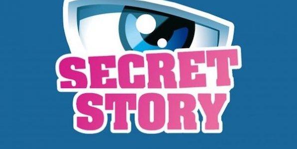 Secret Story 9 : logo de l'émission