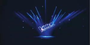 The Voice 3 sur TF1 : 3ème émission