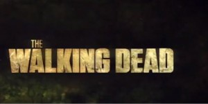 The Walking Dead sur AMC