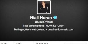 Niall Horan : son Twitter officiel