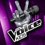 The Voice Kids 2 dévoile un premier talent : écoutez!