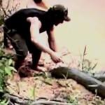 Un homme avalé vivant par un anaconda : fake?
