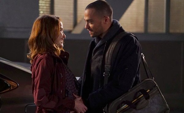 Grey's Anatomy saison 12 : couple